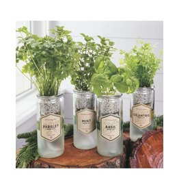 Modern Sprout Self Watering Parsley  Planter