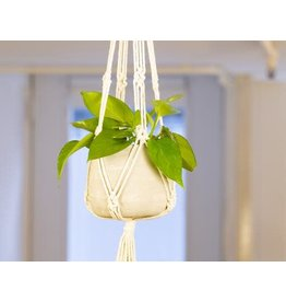 Kikkerland Macrame & Cement Planter in Beige