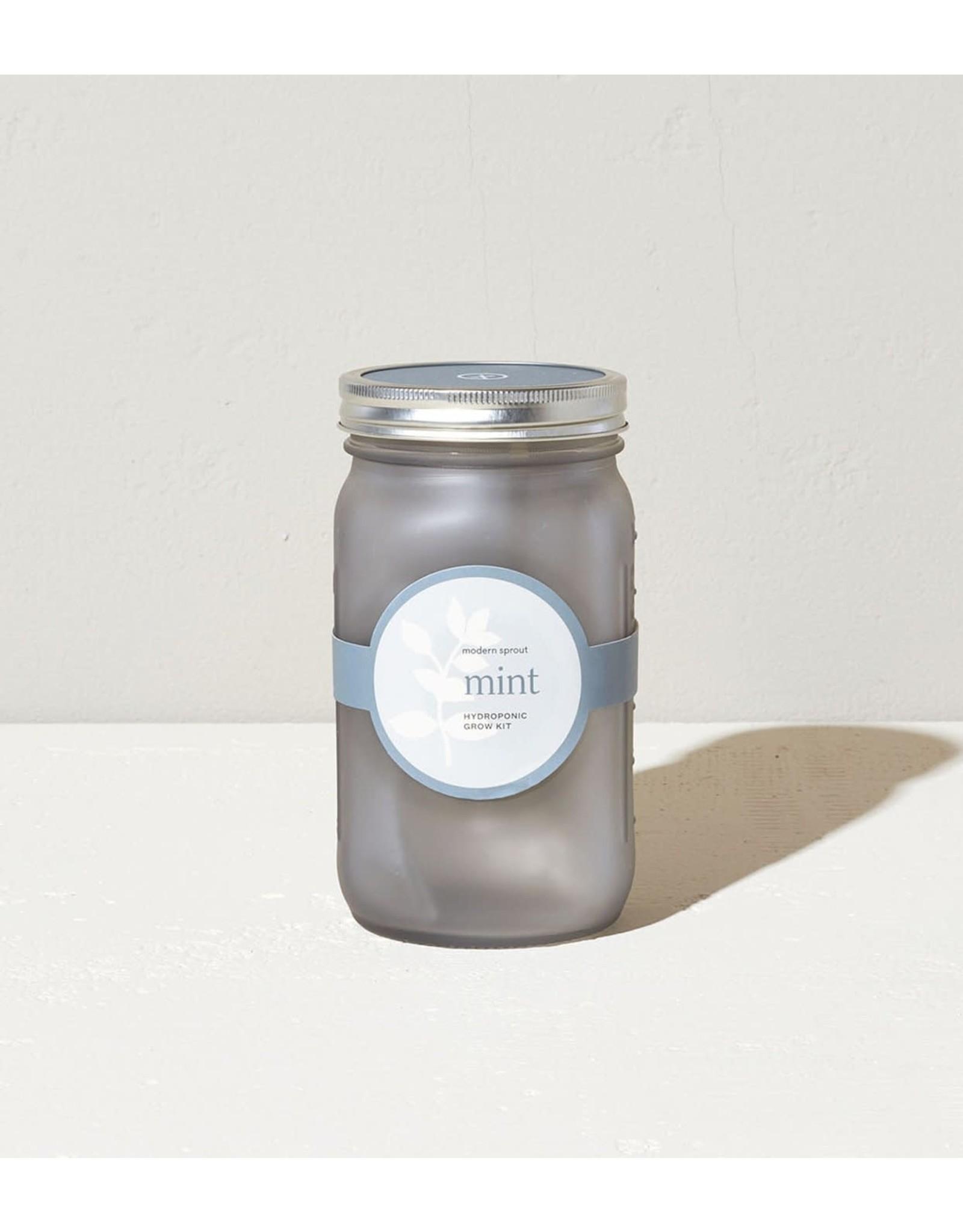Modern Sprout Mint Garden Jar