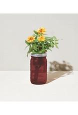 Modern Sprout  Zinnia Garden Jar