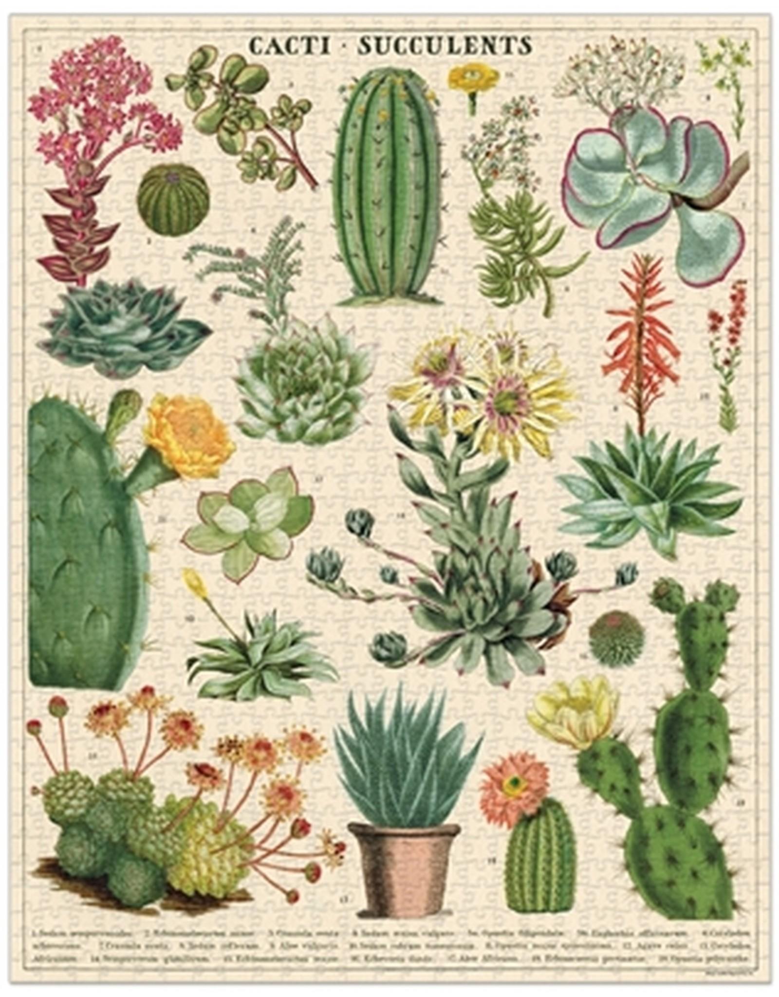 Cacti & Succulents Puzzle
