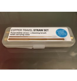 Kikkerland Copper Travel Straw Set