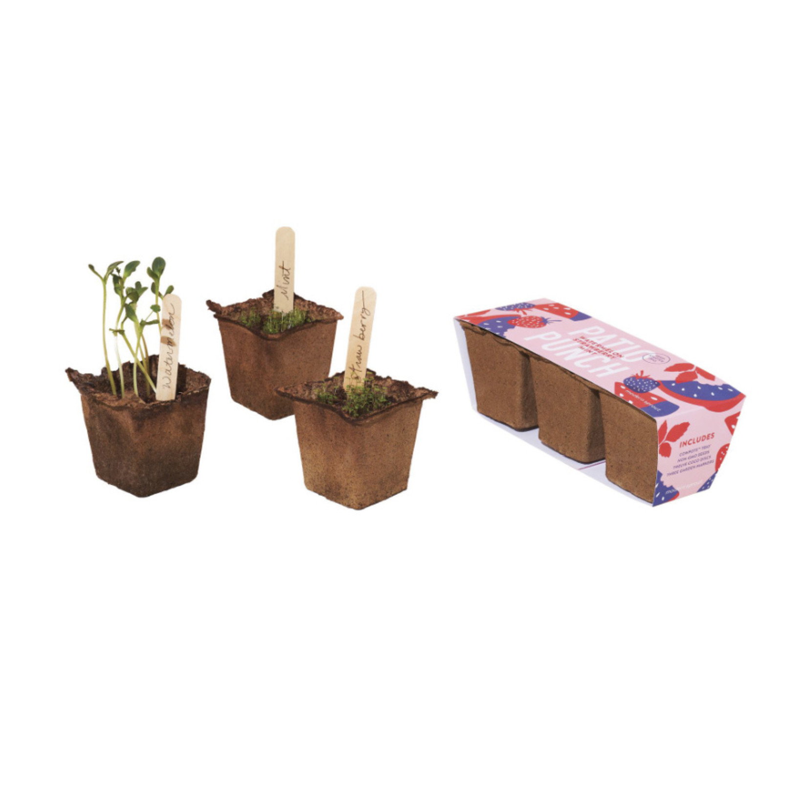 Modern Sprout Seed Starter Trio