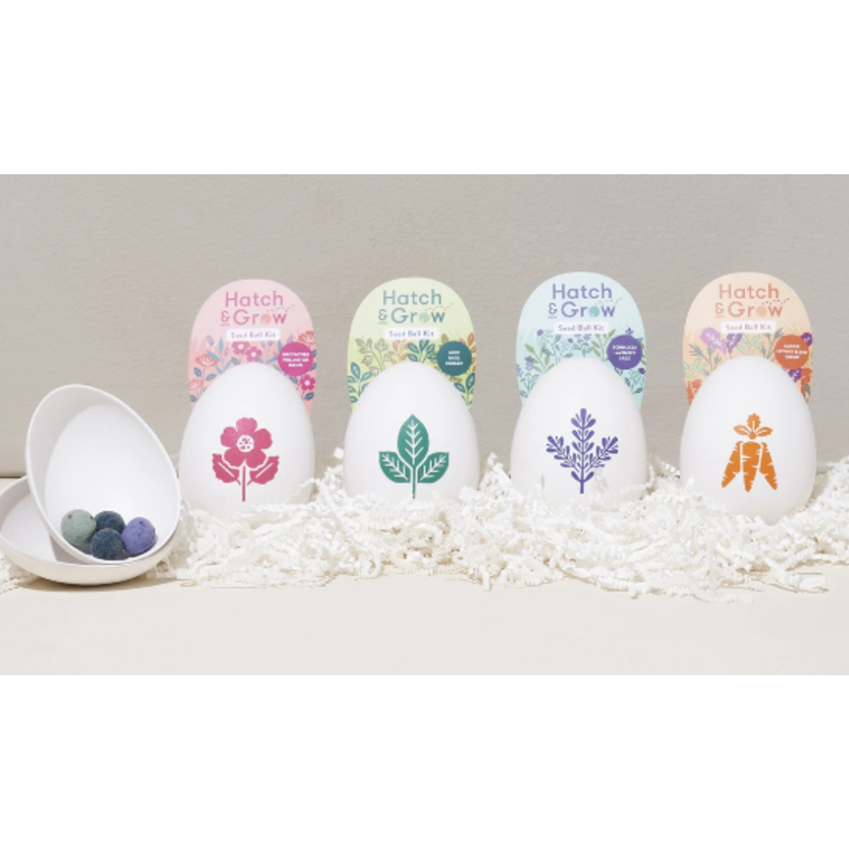 Modern Sprout Hatch & Grow Seed Ball Kits