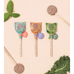 Modern Sprout Culinary Seed Lollipop