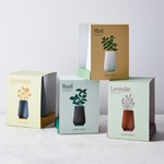 Modern Sprout Tapered Tumbler Grow Kits