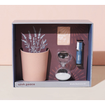 Modern Sprout Mindful Meditation Kit