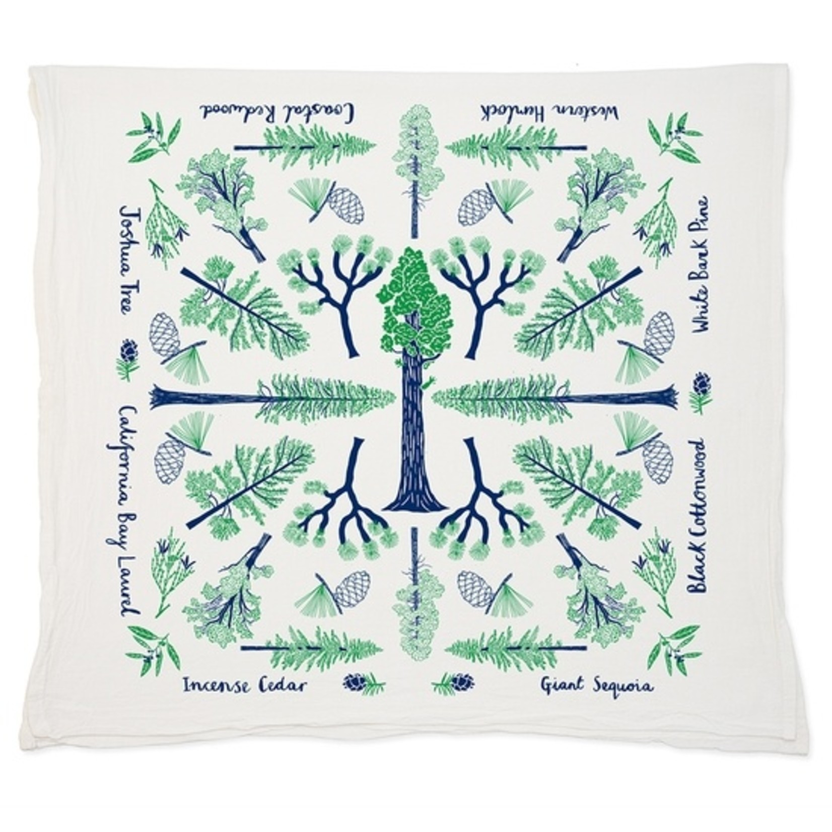 Claudia Pearson Champion Trees Tea Towel