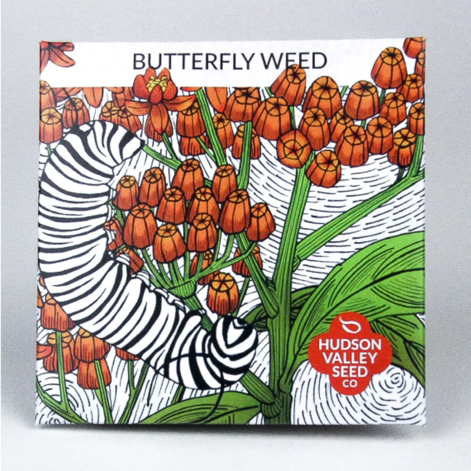Hudson Valley Seeds Butterfly Weed Seeds