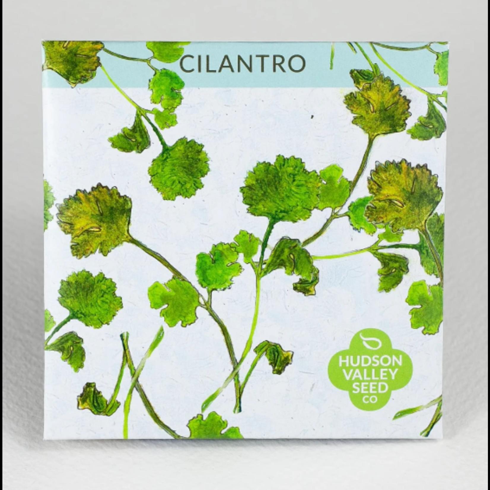 Hudson Valley Seeds Cilantro Seeds