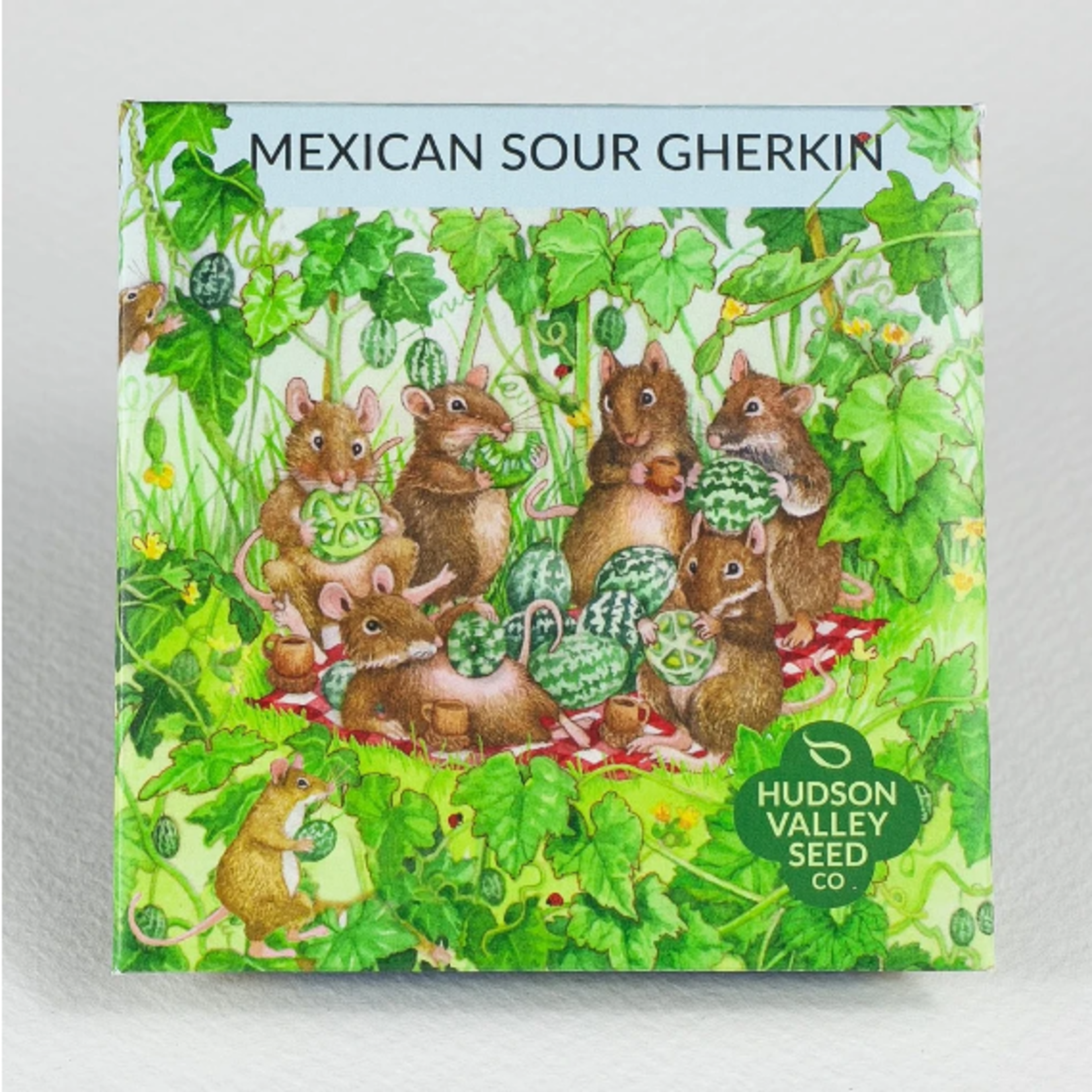 Hudson Valley Seeds Mexican Sour Gherkin Seeds
