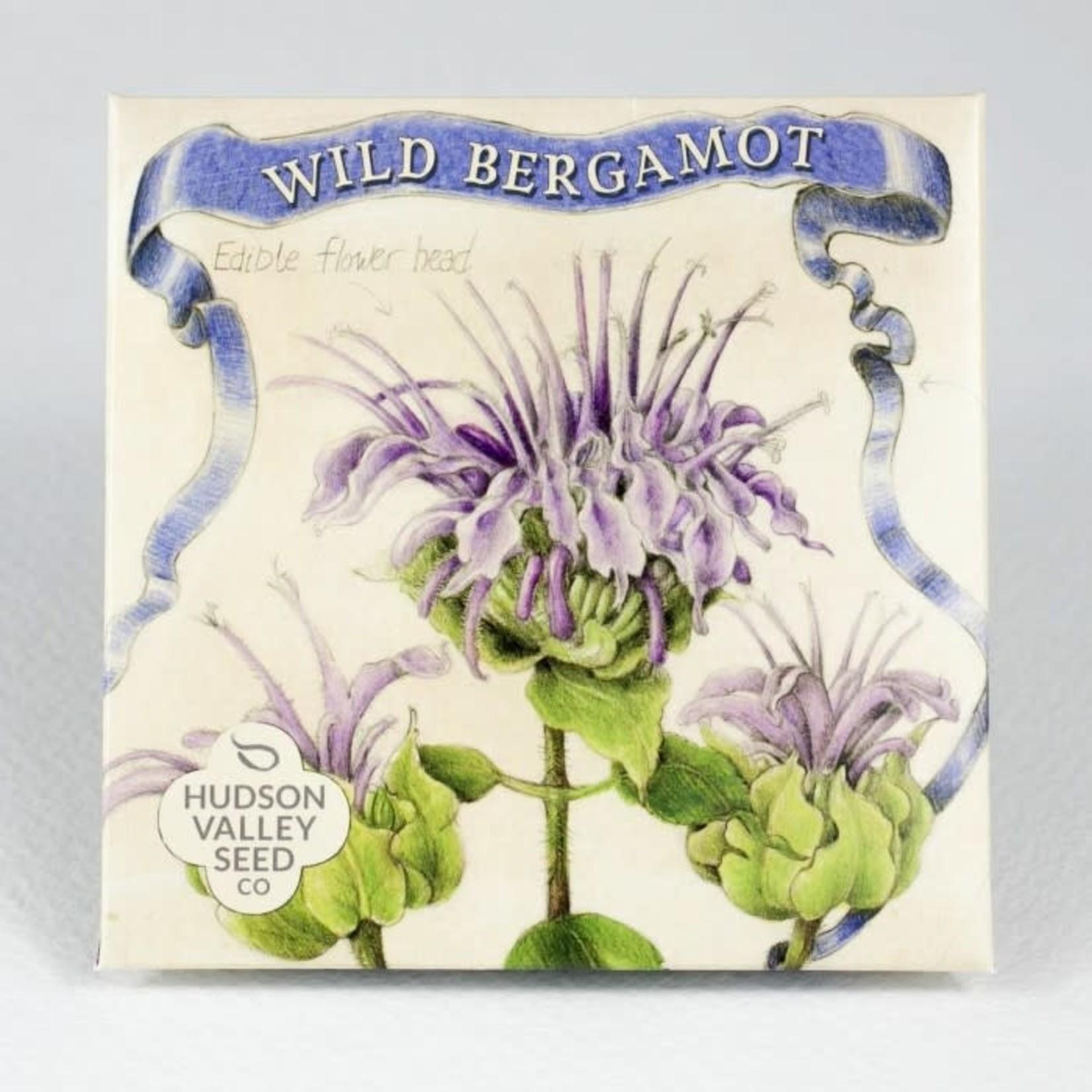 Hudson Valley Seeds Wild Bergamont Seeds