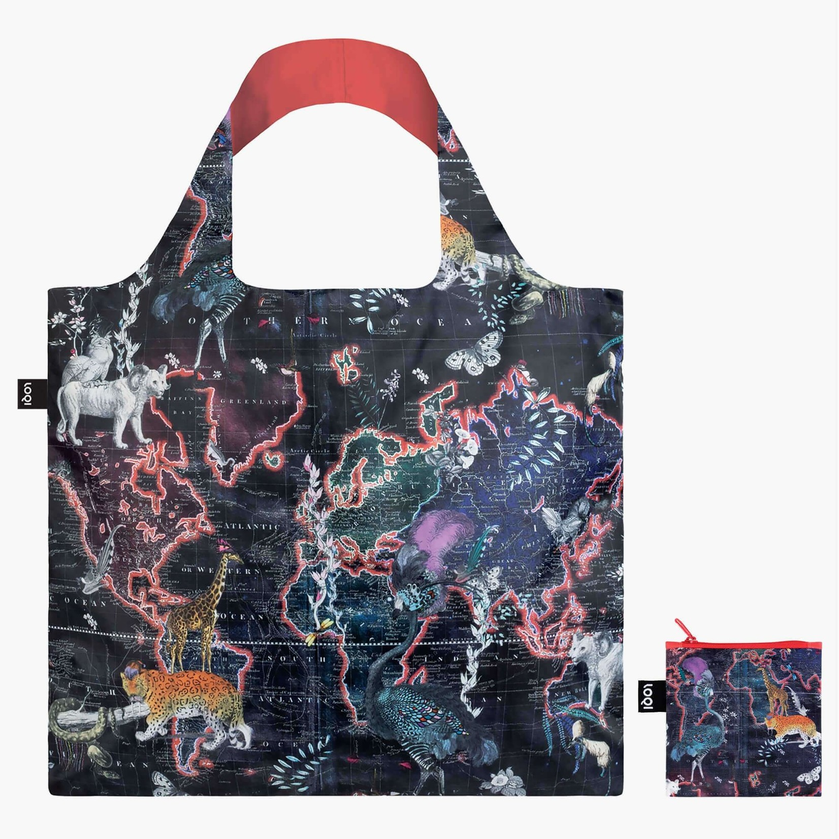 Loqi Bag: World Map