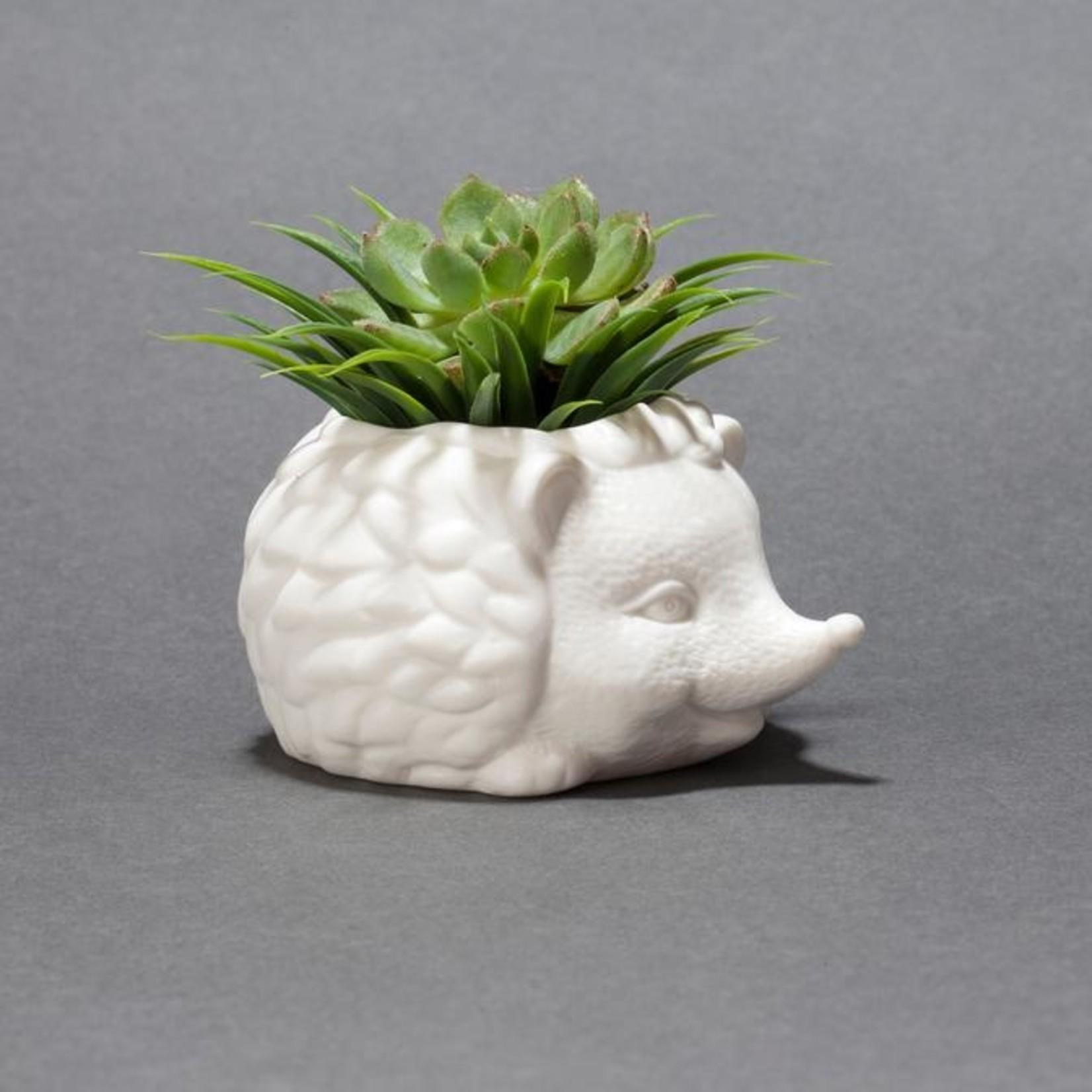 Kikkerland Hedgehog Planter
