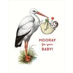 Baby Card:  Stork Hooray
