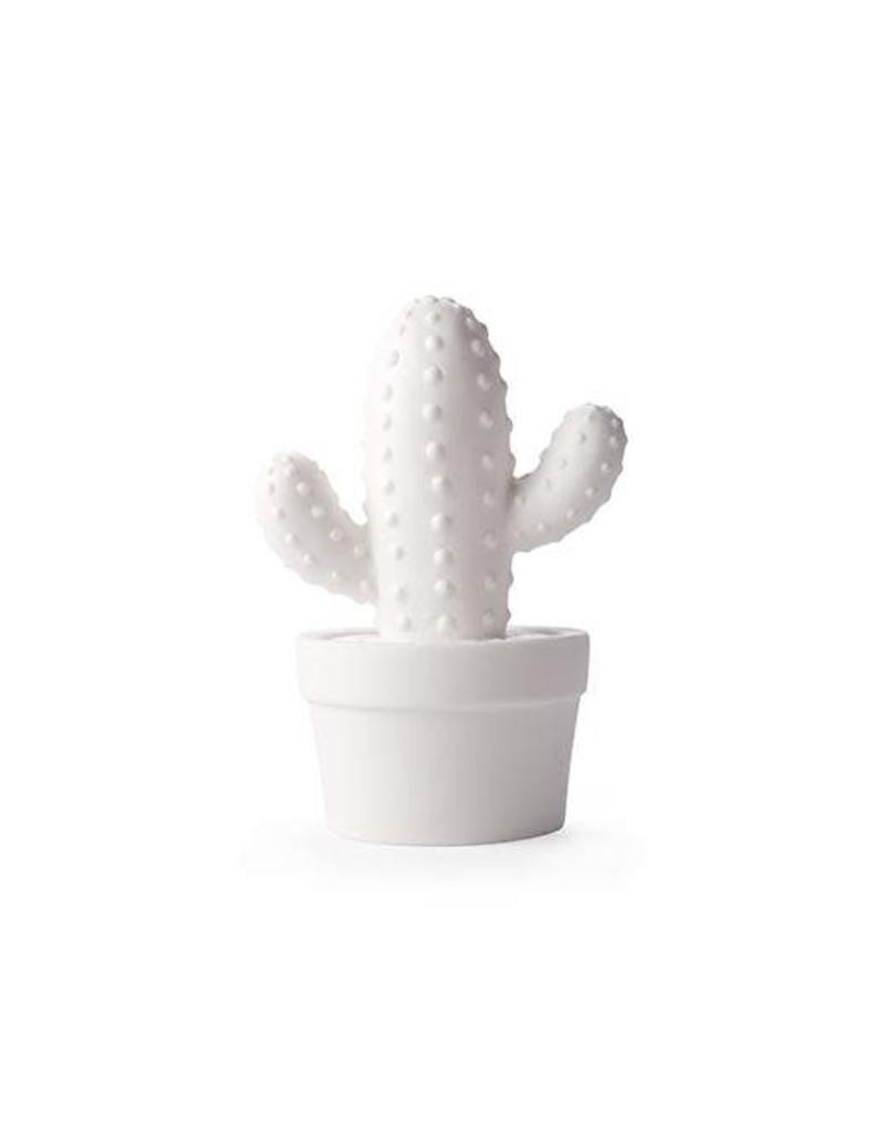 Cactus Led Light (potted)