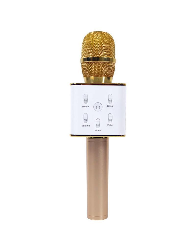 Wireless Express Inc. Sing-Along Pro Bluetooth Karaoke Mic