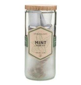 Self Watering Mint Planter