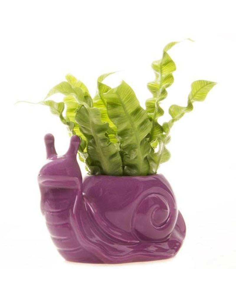 Jett The Snail Planter