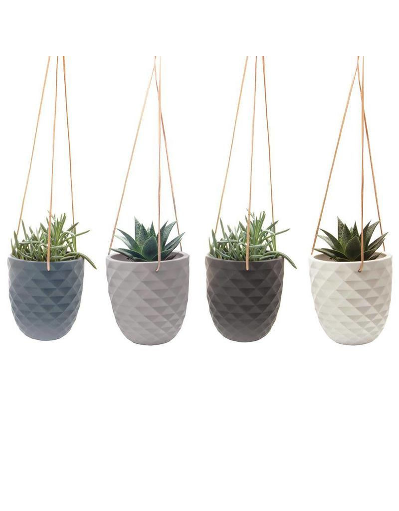 Small Ceramic Hanging Planters All In A Row Perfect For Indoor Plants Modern Colors Exit9 Gift Emporium