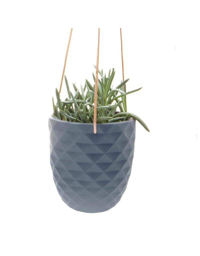 Chive Thimble Hanging Planter