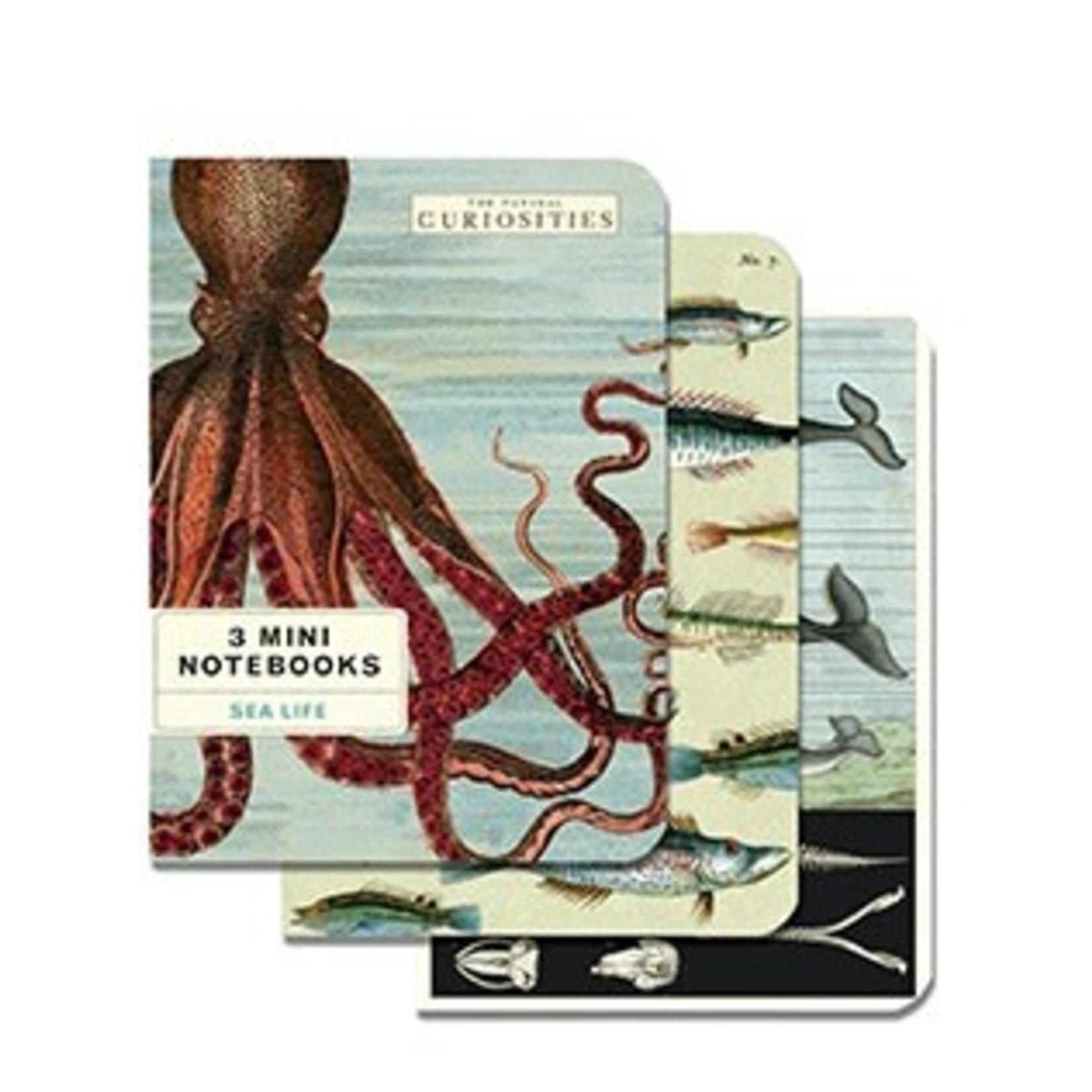 Cavallini Mini Notebook 3 Pack
