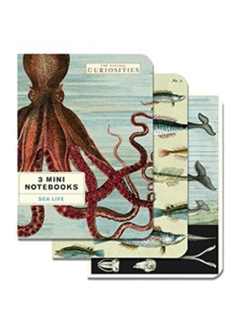 Mini Notebook 3 Pack