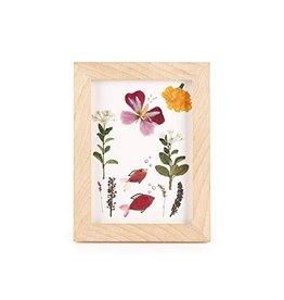 Kikkerland Pressed Flower Frame