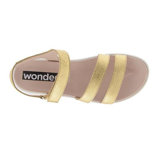 WONDERS C-6504