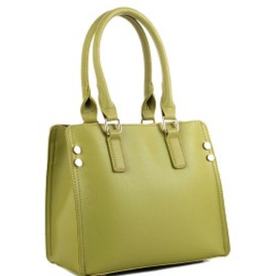 Lovely Purses 4 U Venice Satchel