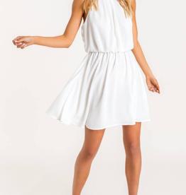 Lush Sheer Joy Pleated Dress