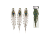 "MultiCraft . MCI 10""-14"" Real Peacock Feathers 2/pk"