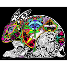 Stuff To Color . SFC 16X20 Velvet Poster Inner Nature Hare