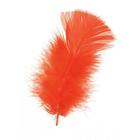 Darice . DAR Feathers - Orange