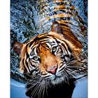 Collection D'Art . CDA Tigress Diamond Embroidery/Printed/Gem Kit 48X38cm
