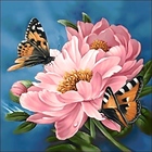 Collection D'Art . CDA Flower/Butterfly Diamond Embroidery/Printed/Gem Kit 38X38cm