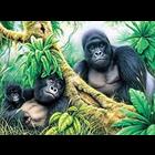 Royal (art supplies) . ROY Lg. PBN Mountain Gorillas