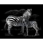 Royal (art supplies) . ROY Silver Engraving Zebra