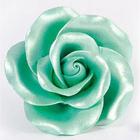 AmericaColor . AME AmeriMist 4.5oz Airbrush – Green Sheen