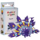 Modular Origami Kit - Peacock