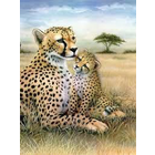 Royal (art supplies) . ROY LEOPARD PAINT BY NUMBER