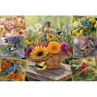 Cobble Hill . CBH Rosemary's Birds 2000 pc Puzzle