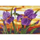 """Iris Sunset Diamond Embroidery Facet Art Kit 23.5""""X17.75"""""""