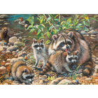 Cobble Hill . CBH Raccoon Family 350pc Puzzle