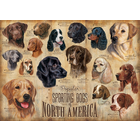 Outset Media . OUT Sporting Dogs 1000pc Puzzle