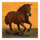 Anatolian . ANA Adobe Run 1024Pc Puzzle
