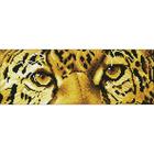 Leopard Spy - Diamond Dotz