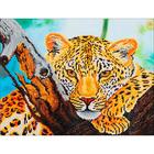 Leopard Look - Diamond Dotz