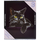Midnight Cat - Diamond Dotz Kit W/ Frame