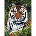 Royal (art supplies) . ROY TIGER IN HIDING